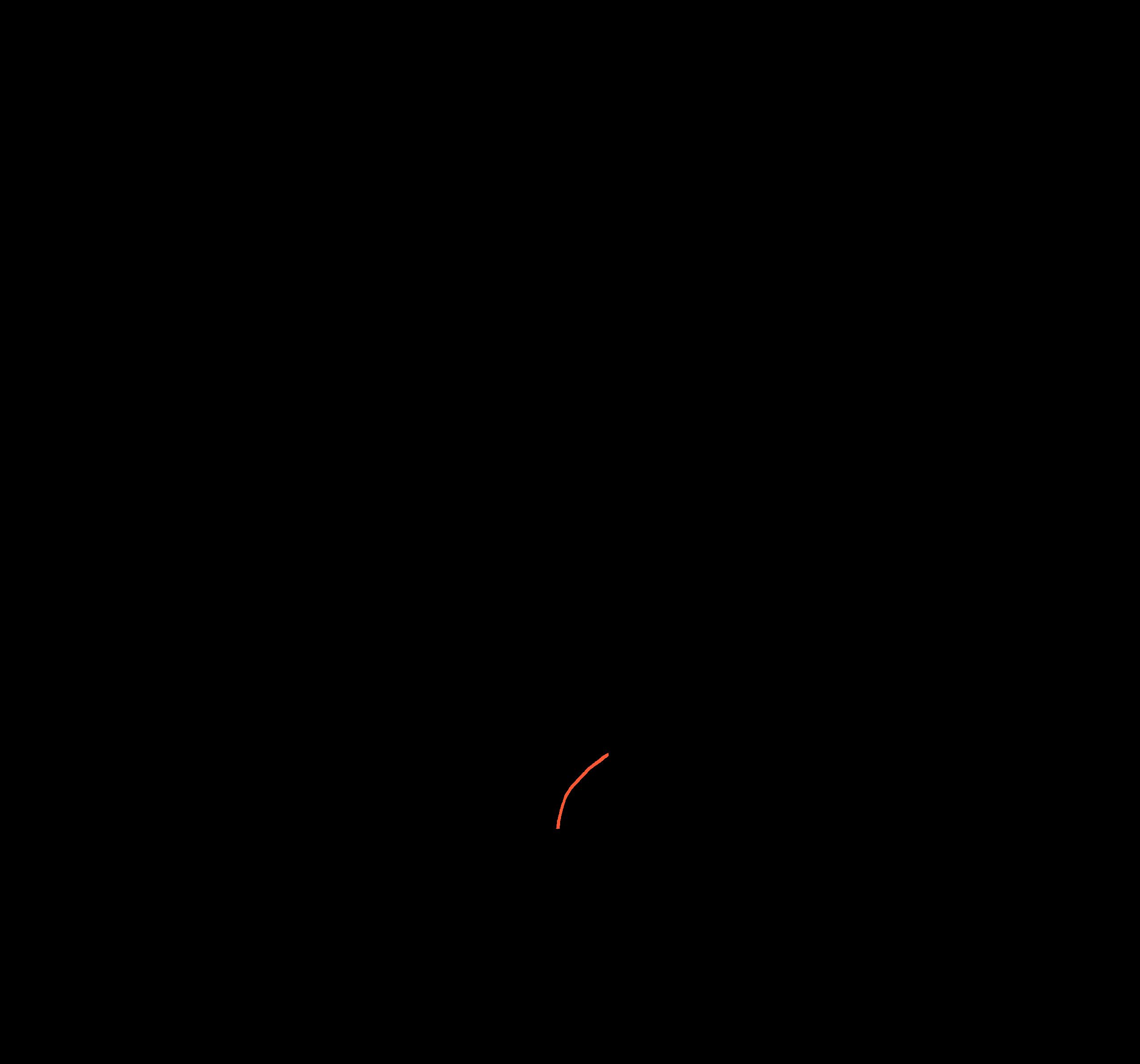 animation 01-1