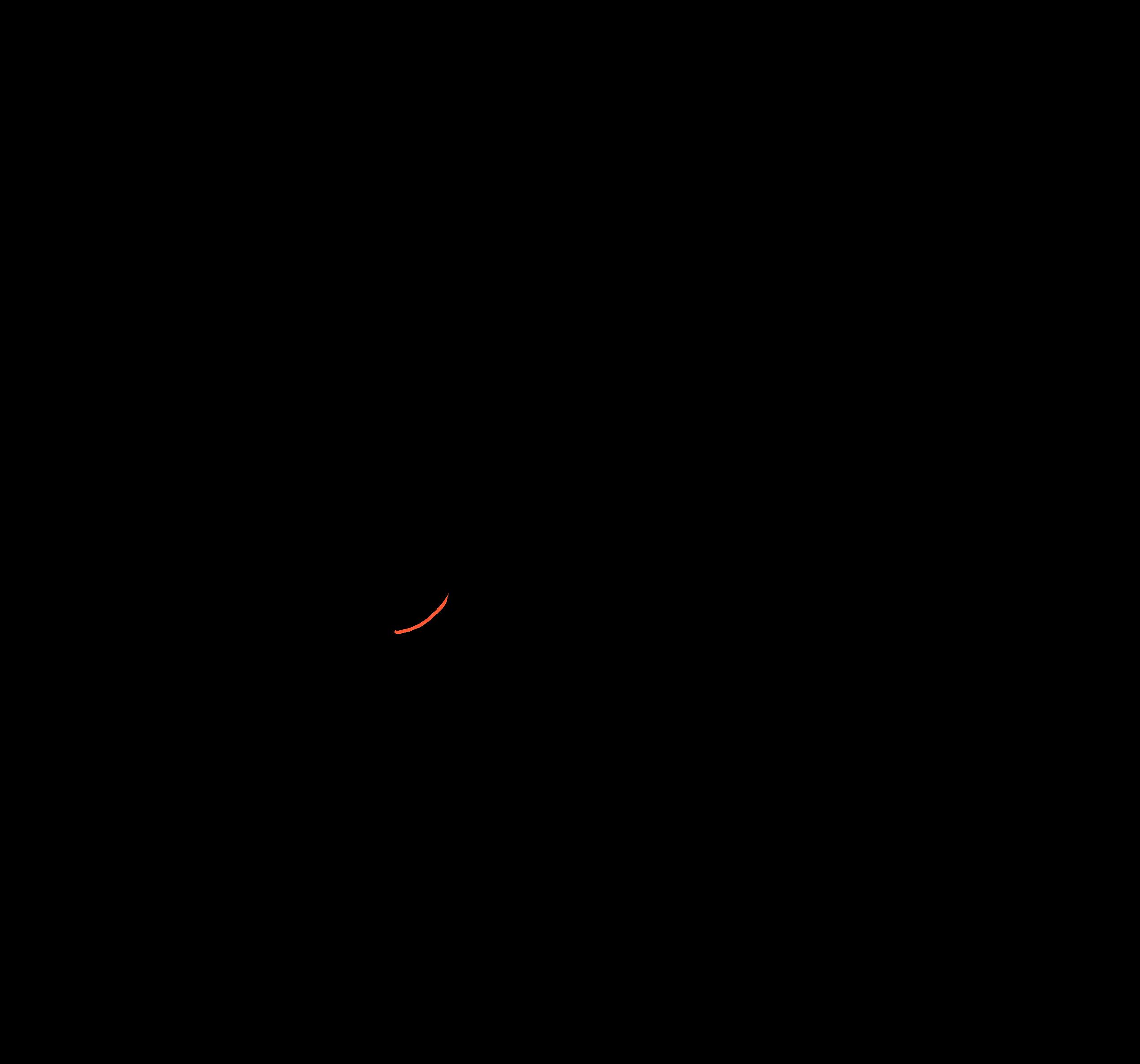 animation 02-1